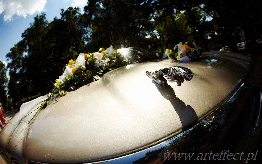 fotografia ślubna Gliwice katedra Piotra i Pawła zdjęcia ślubne wesele restauracja Sylvia Sośnicowice